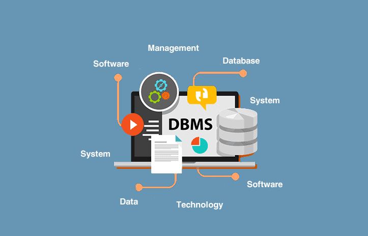 What-is-database-managment-system